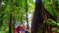 KL-Eco-Forest-Park
