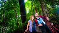 Taman-Eko-Rimba-KL-Eco-Forest-Park