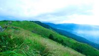broga-hill