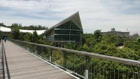 canopy-bridge-putrajaya-botanical-garden