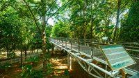 putrajaya-botanical-garden