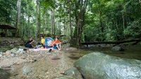 sg-congkak-recreational-forest