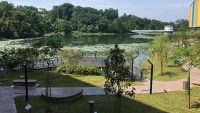 View from Shah Alam library's back entrance.