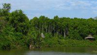 View of Kuala Selangor Nature Park's 20-acre lake.